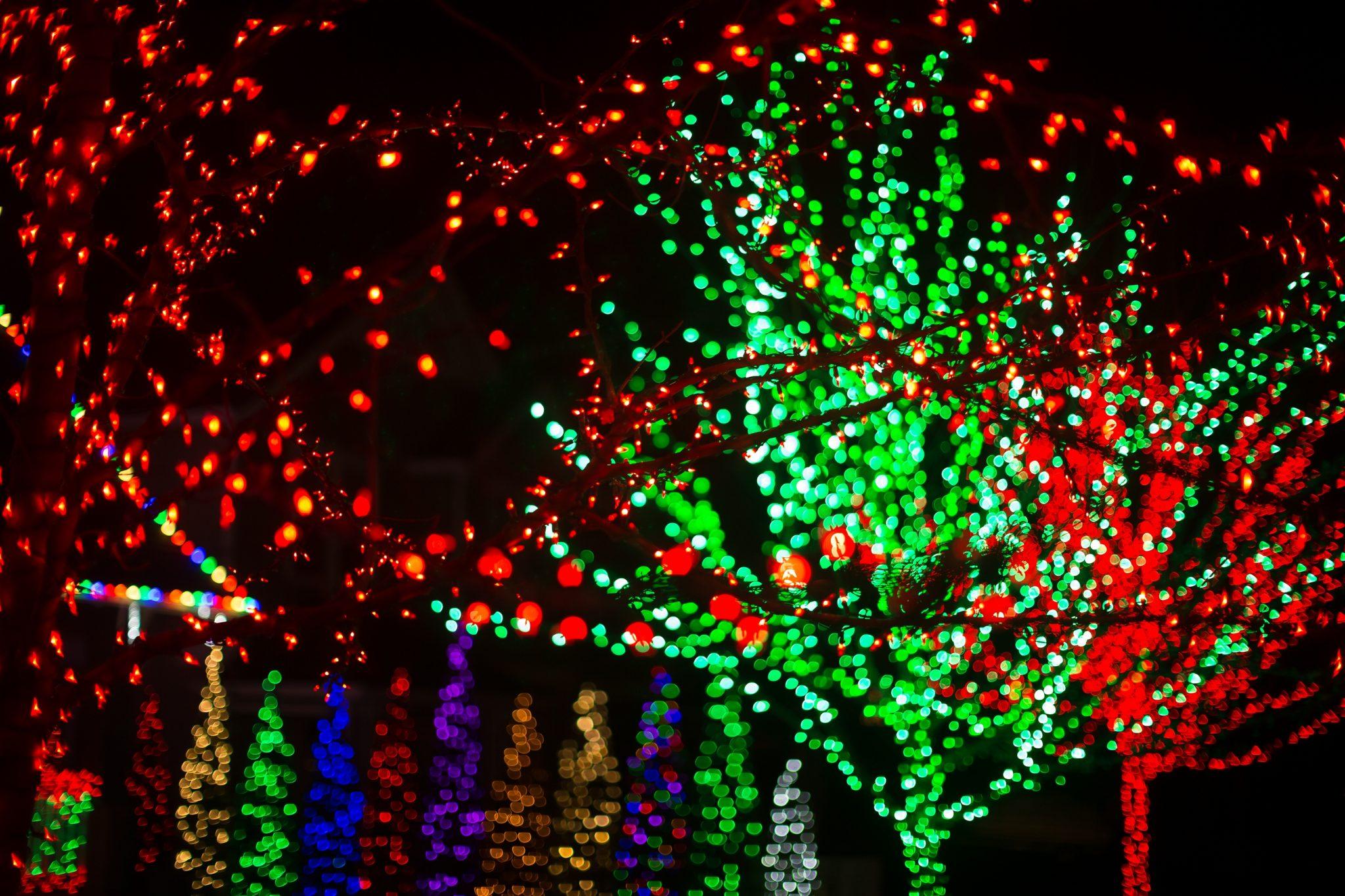 Christmas Lights Tacoma_02