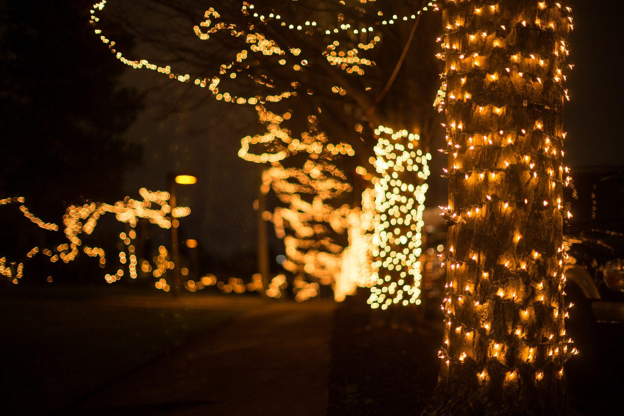 Christmas Lights Tacoma_12